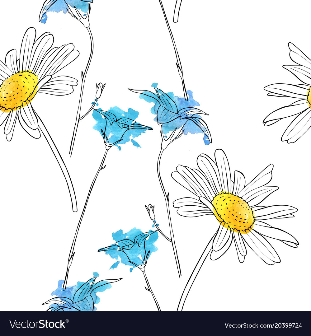Drawing flower of daisy royalty free vector image drawing flower of daisy vector image izmirmasajfo Choice Image