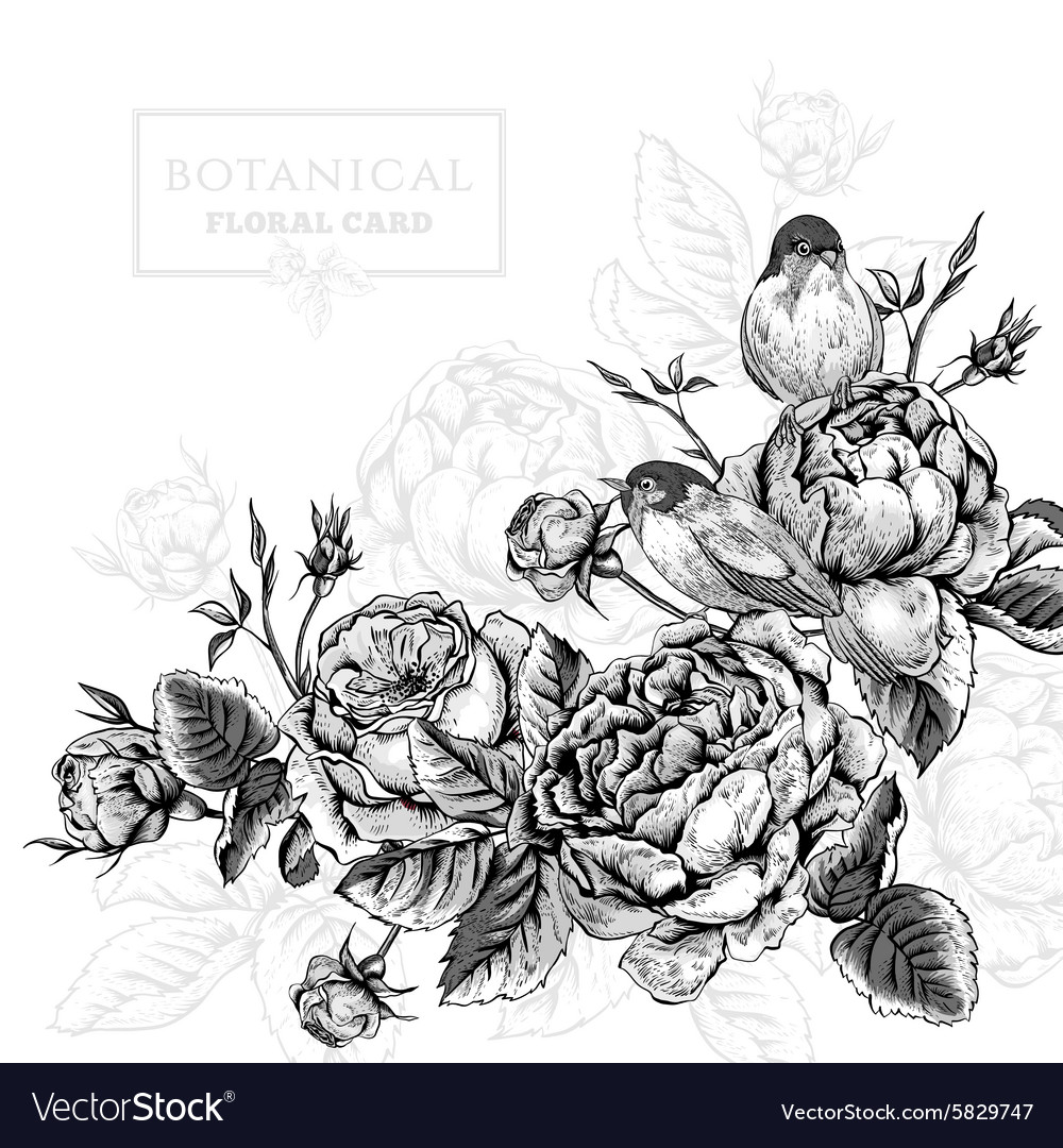 Floral card in vintage style with blooming english vector image