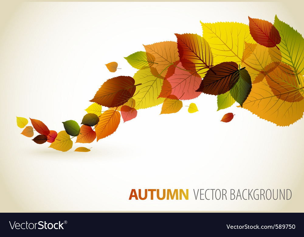 Autumn abstract floral vector image