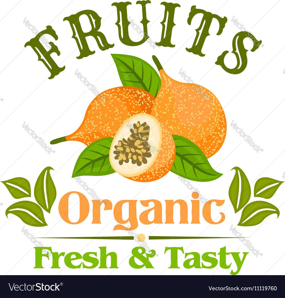 Exotic yellow passion fruit cartoon badge vector image