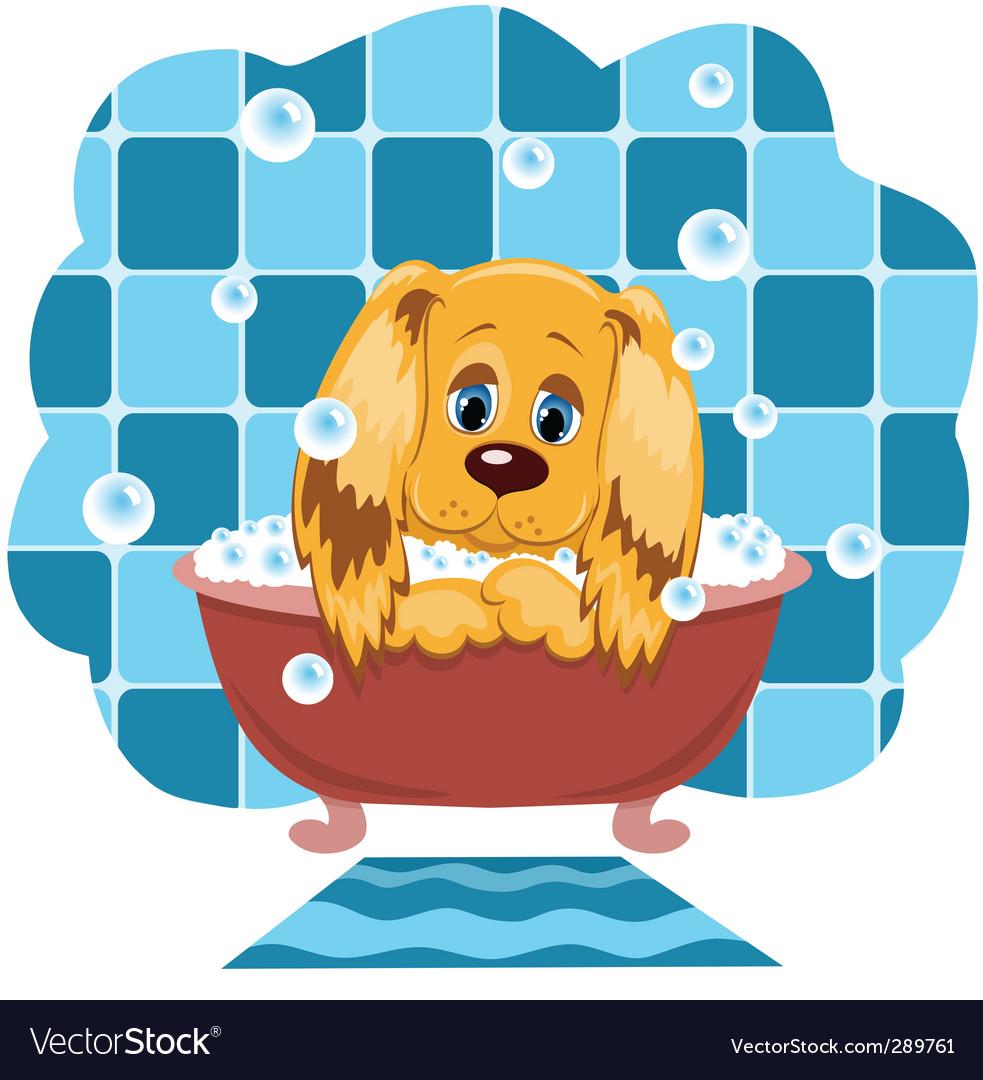 Dog bathes vector image