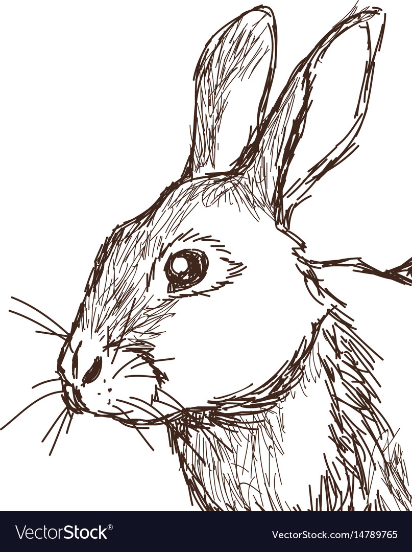 Beautiful and adorable sketch style vector image