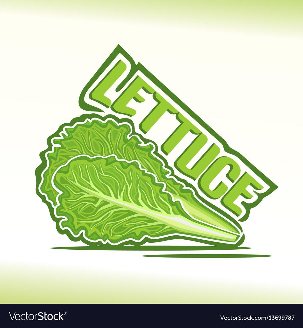 Logo for lettuce vector image