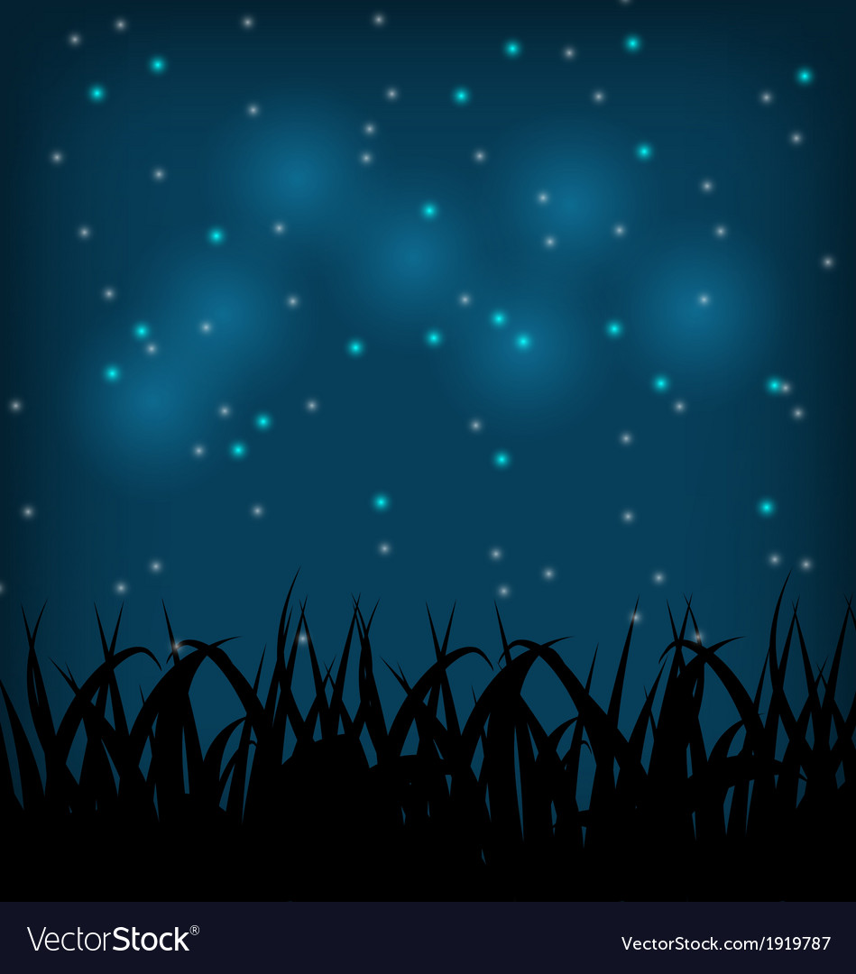 grass field at night. Night Sky With Grass Field Vector Image At