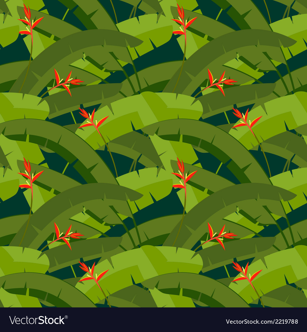 Tropical palm leaves with red Heliconia flowers vector image