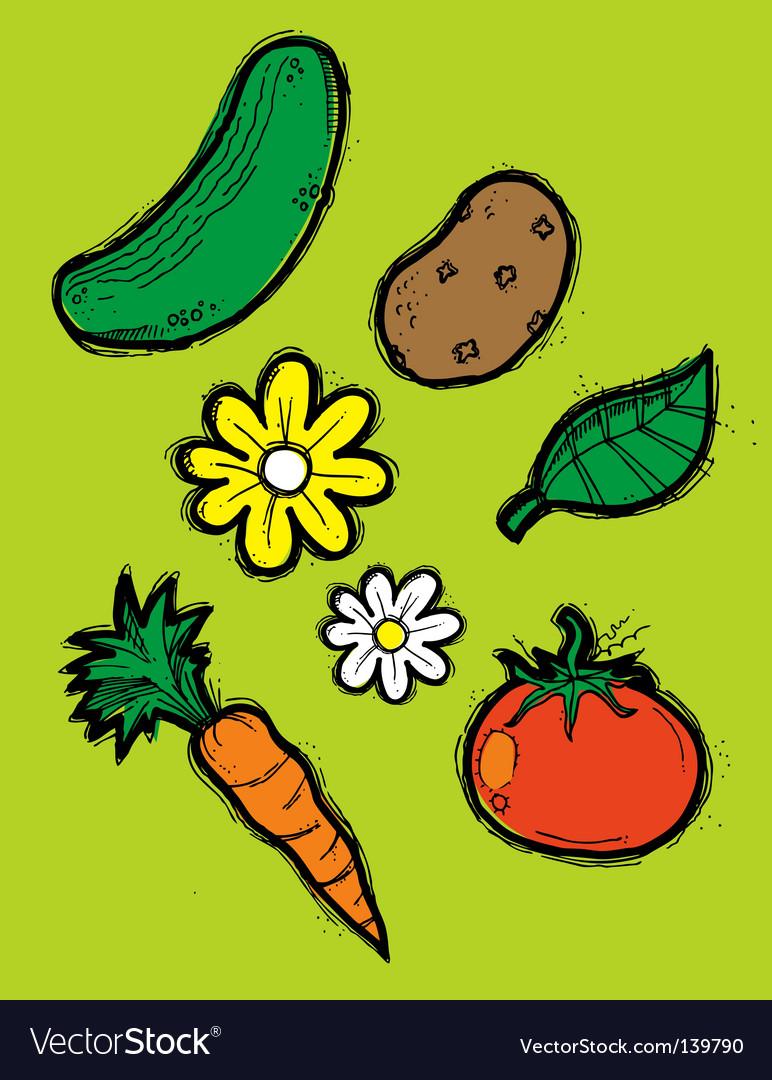 Garden elements vector image