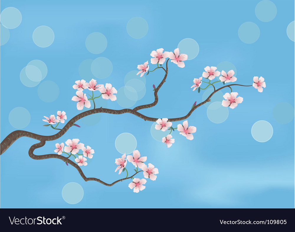 Flowered sacra vector image