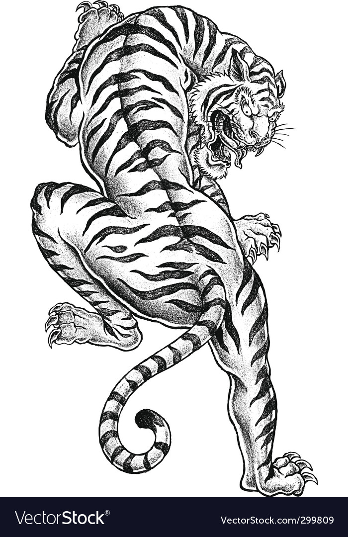 Shaded asian tiger vector image