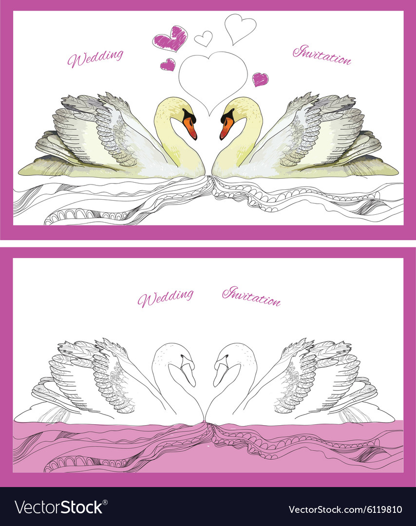 Couple decoration swans on waves vector image