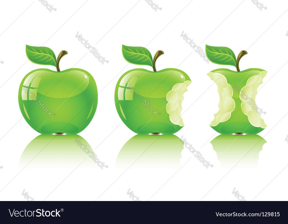 Green nibbled apple with leaf vector image