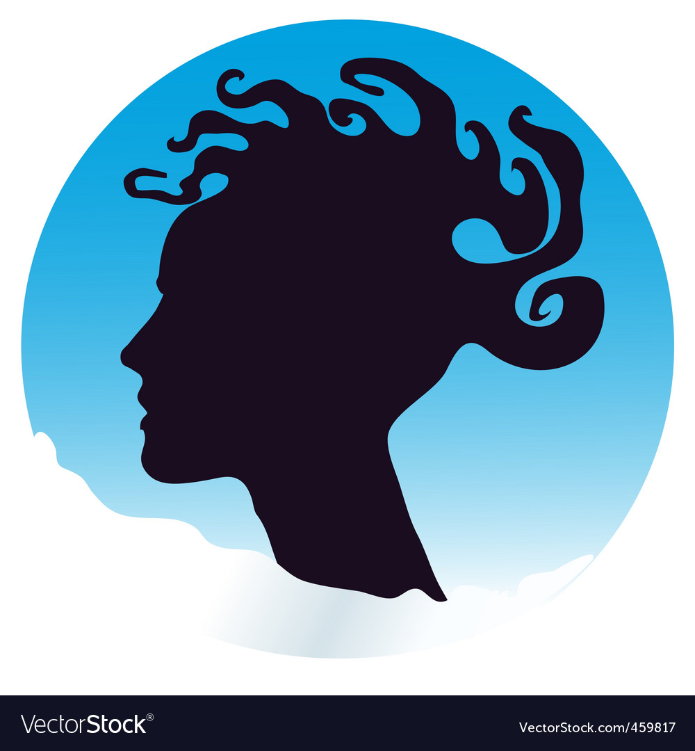 Medusa hair woman vector image