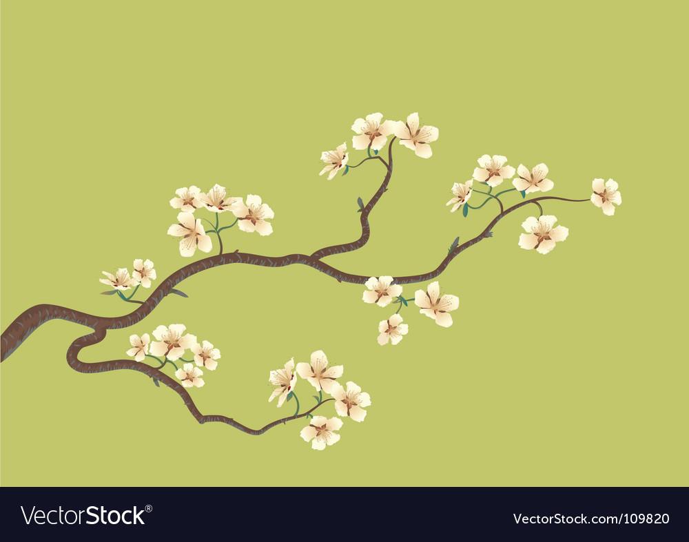 Flowered Sakkara vector image