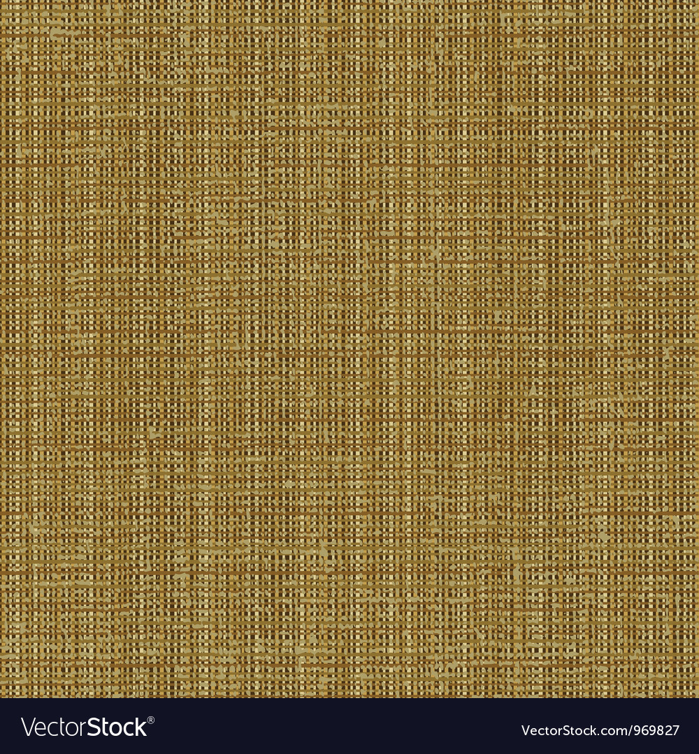 Canvas texture pattern vector image