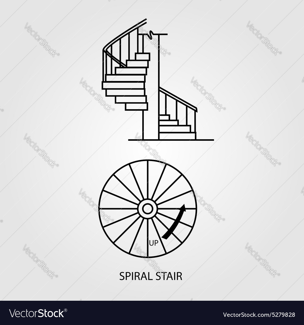 Top view and side of a spiral staircase vector image