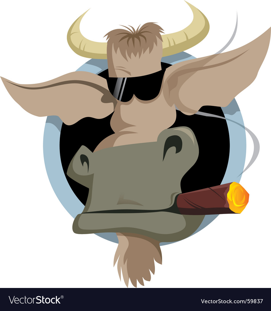 Bull and cigar vector image