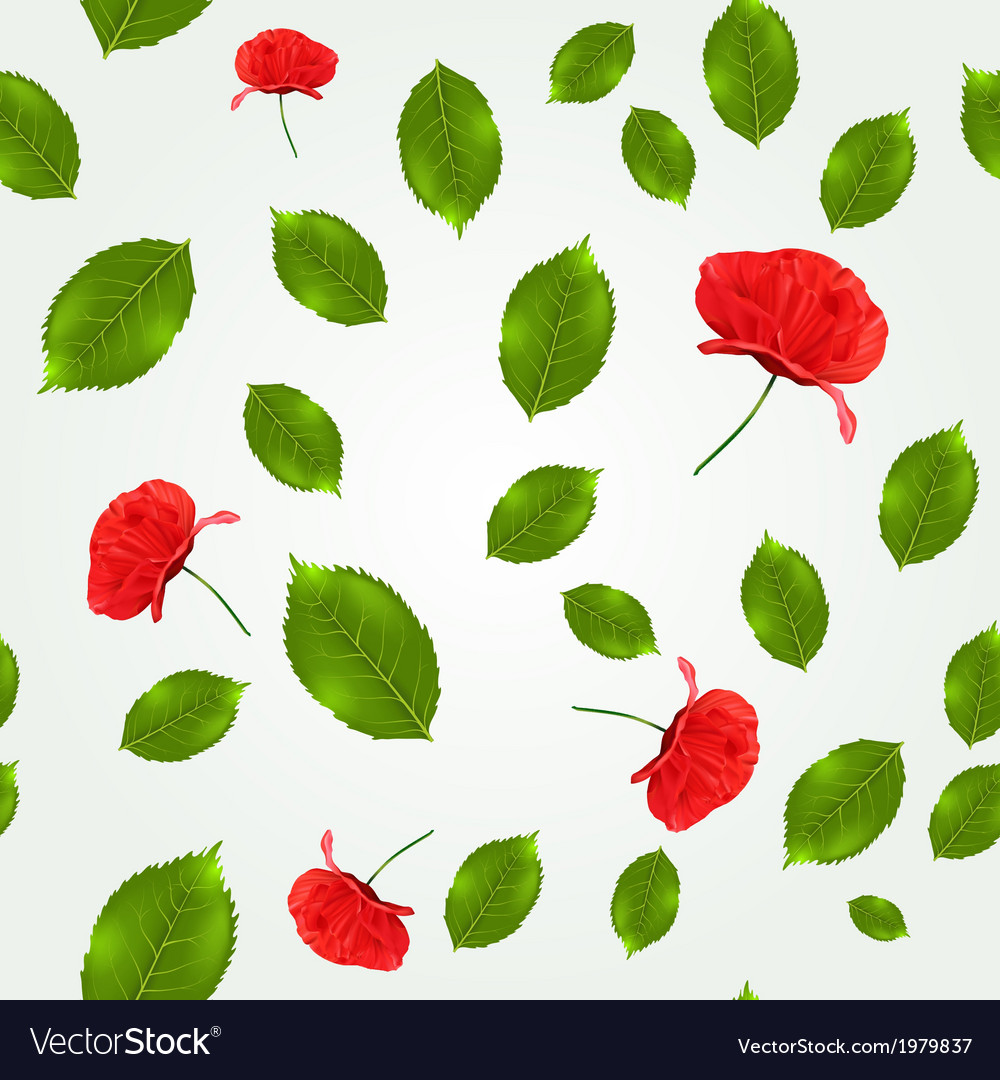 Spring seamless pattern with leaves and poppies vector image