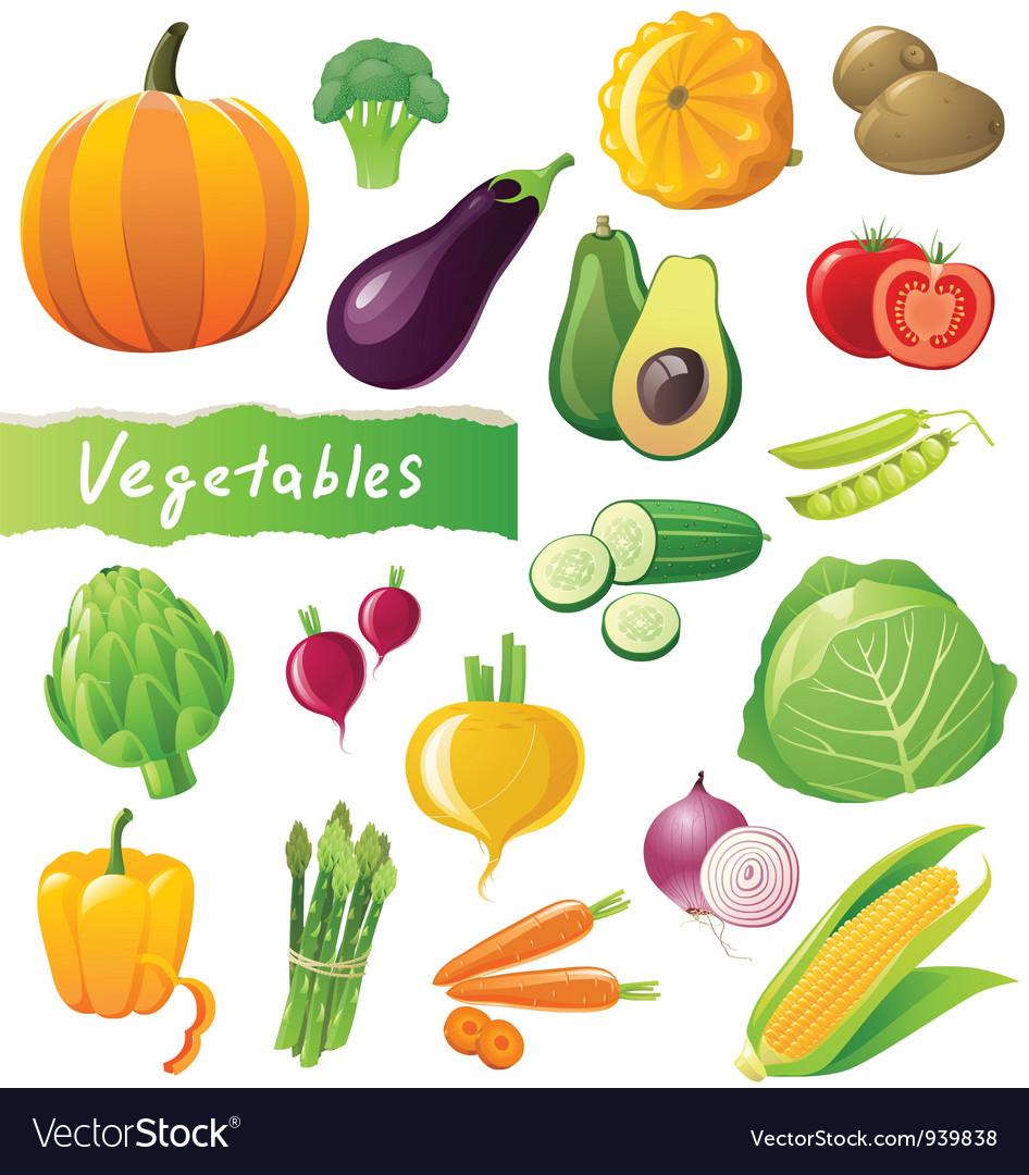 GREAT vegetables set vector image