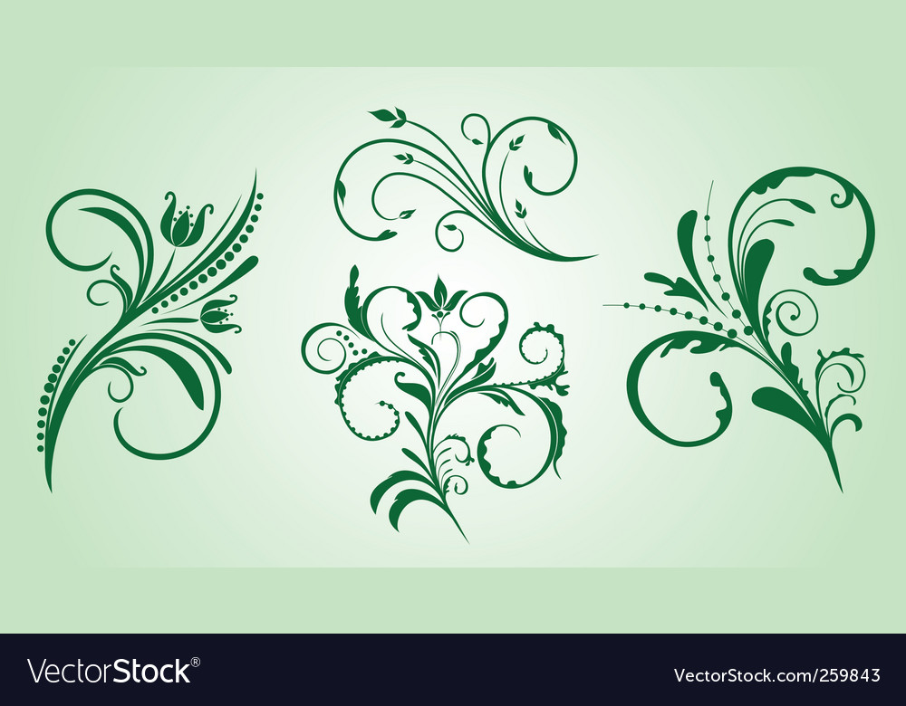 Ornament collection vector image