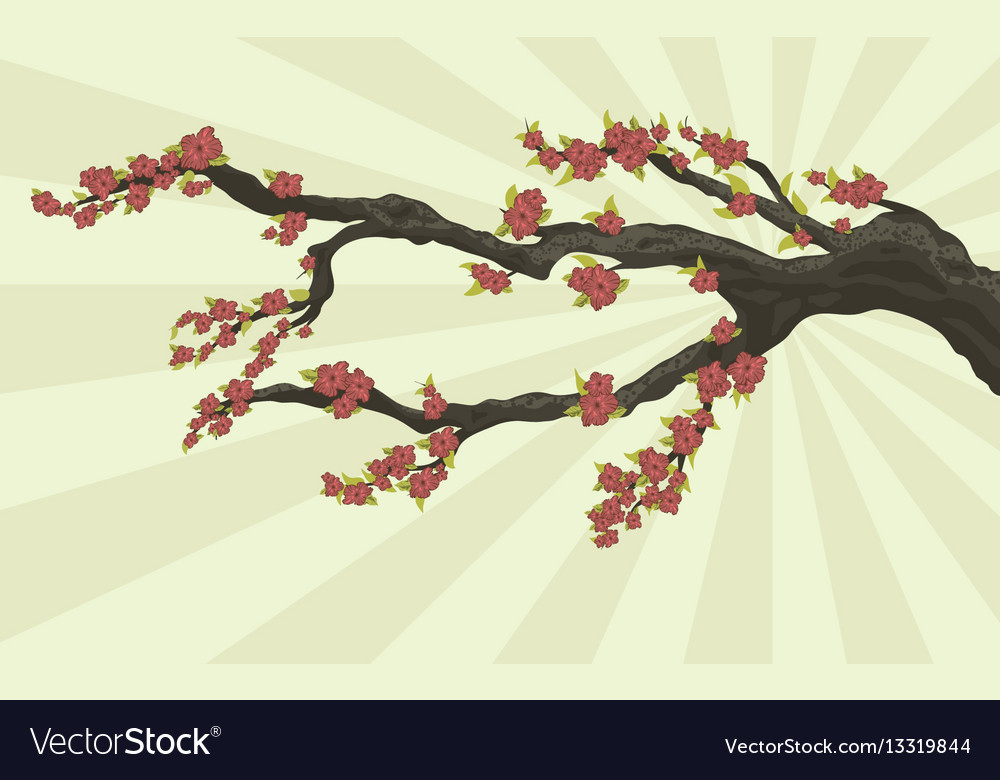 Tree branch with flowers vector image