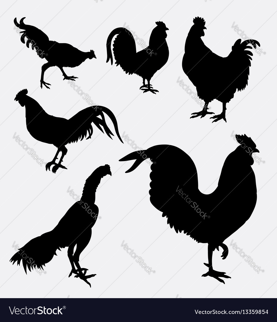 Rooster and chicken animal silhouette vector image