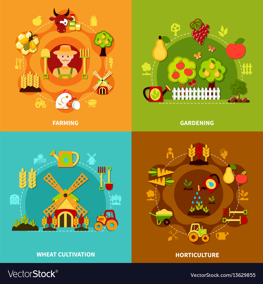 Farming square compositions set vector image