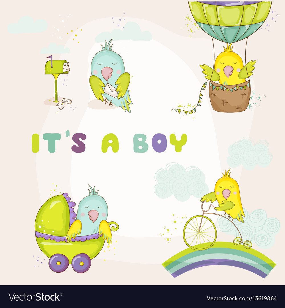newborn cute parrot set for baby shower cards vector image