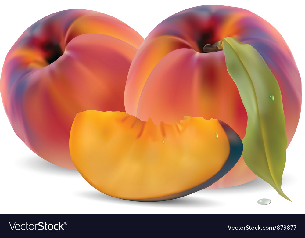 Peaches with leaves and slices Vector Image