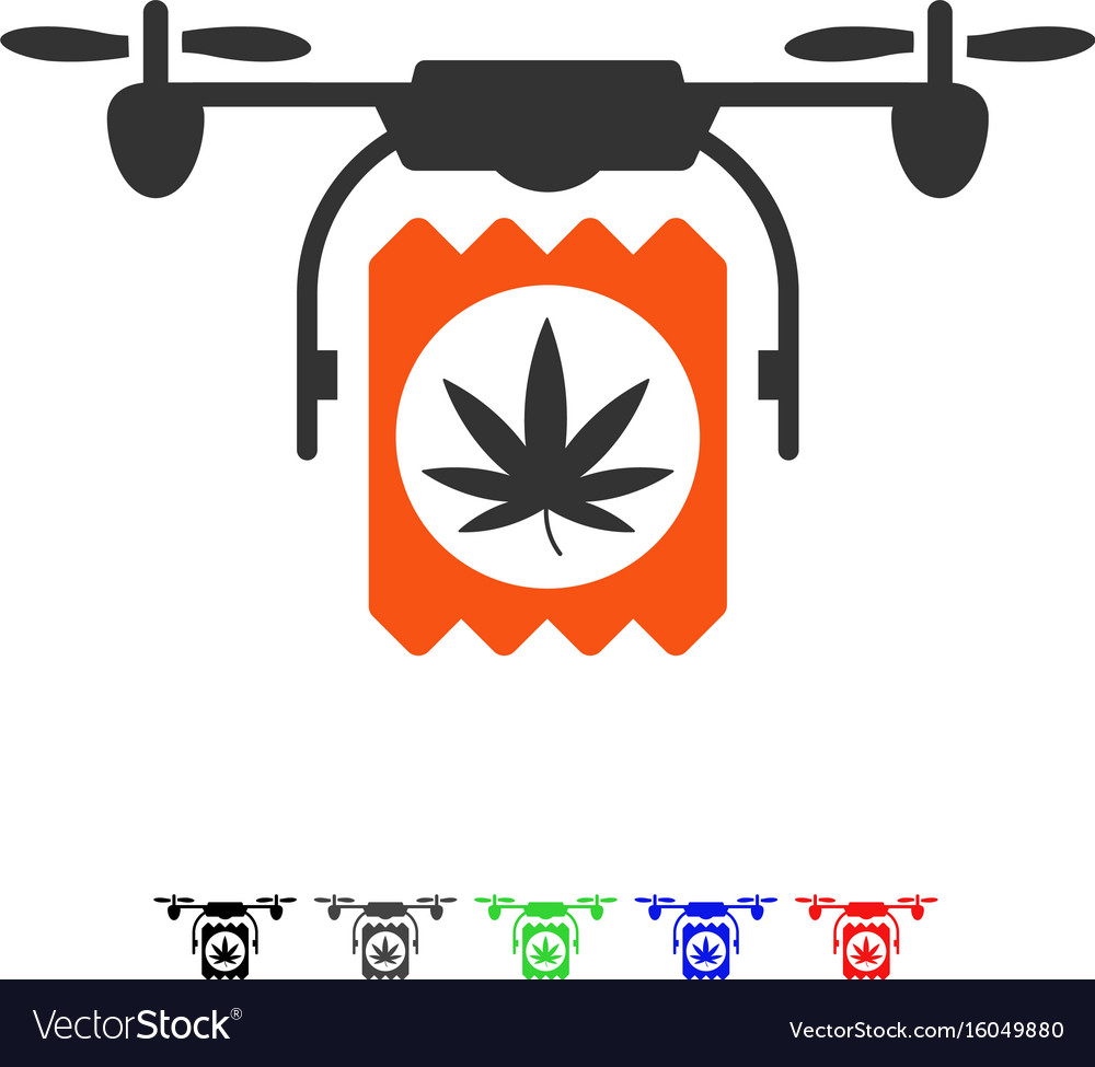 Drugs drone delivery flat icon vector image