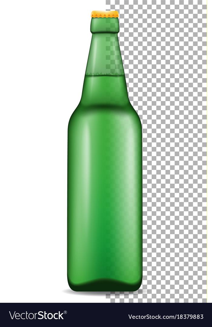 Beer in bottle transparent stock vector image