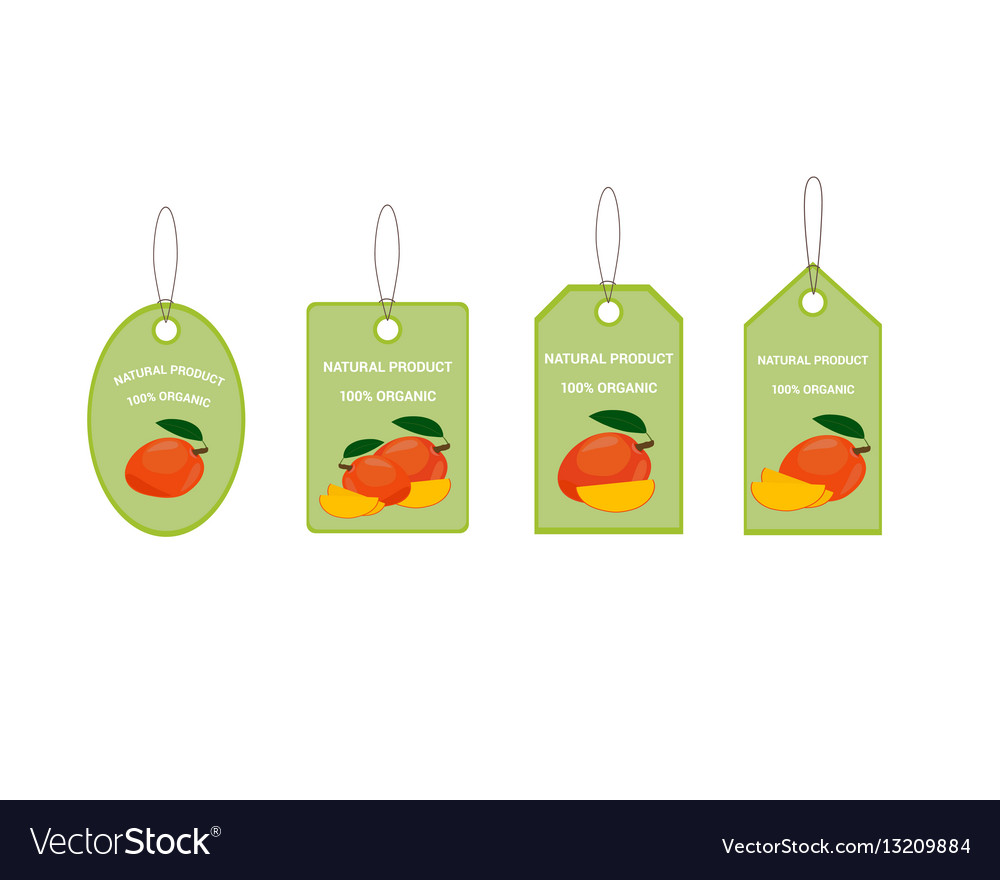 Design labels with ripe yummy mango vector image