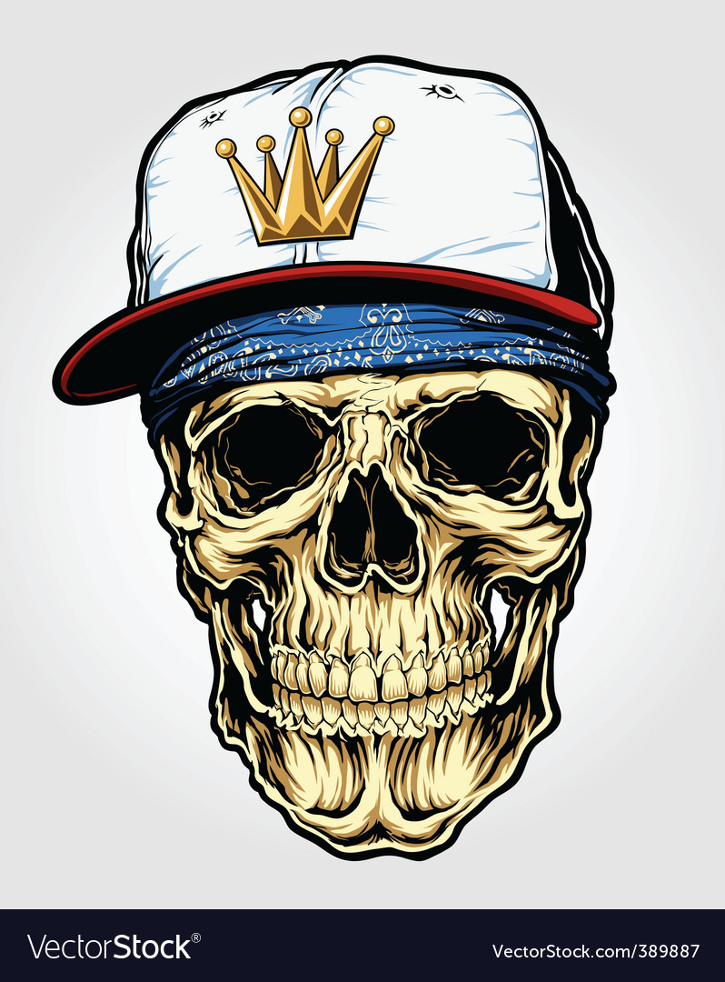 Skull with bandana and cap vector image