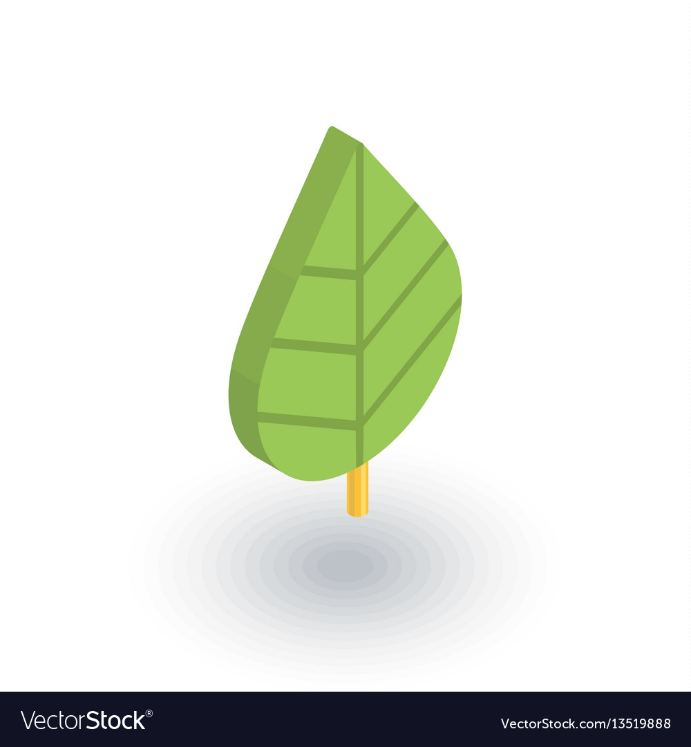 Green leaf eco isometric flat icon 3d vector image
