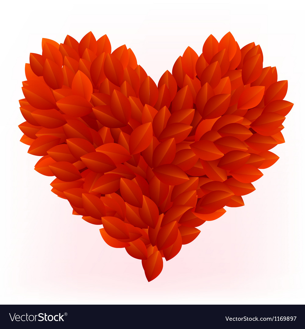 Beautiful heart made from red petals vector image