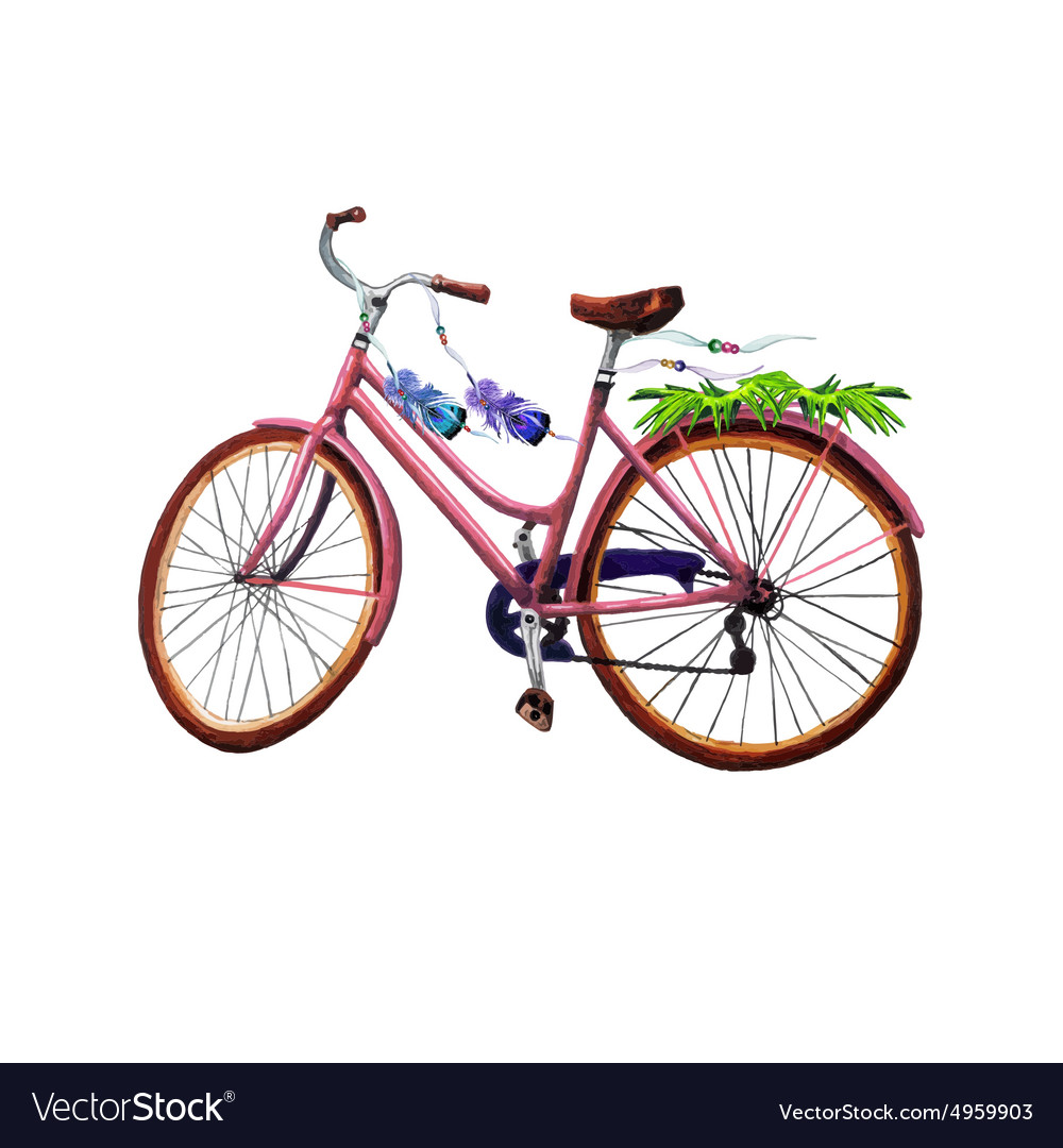 Bike leaves and feathers vector image