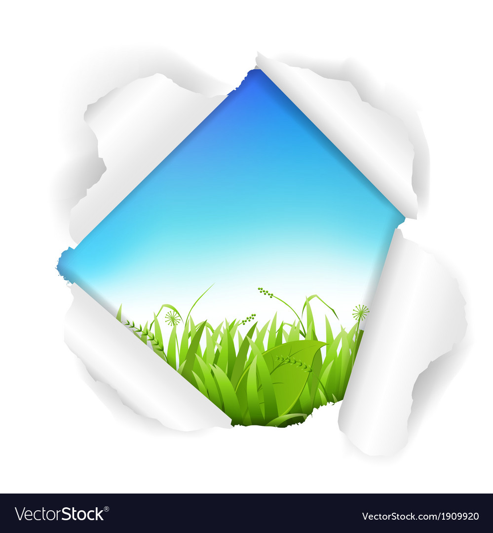 Sky And Grass Torn vector image