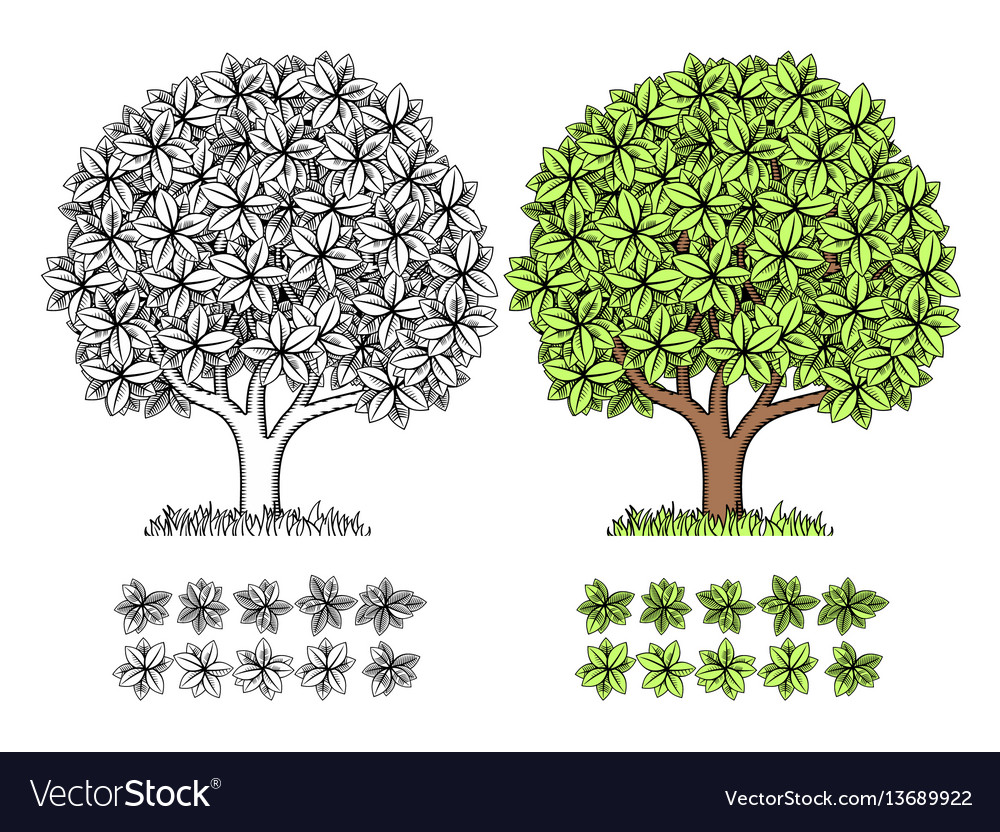 Stylized wood for engraving vector image