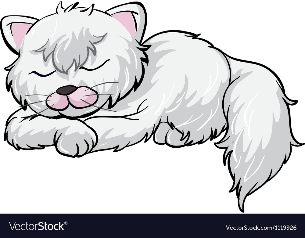 A sleeping cat vector image