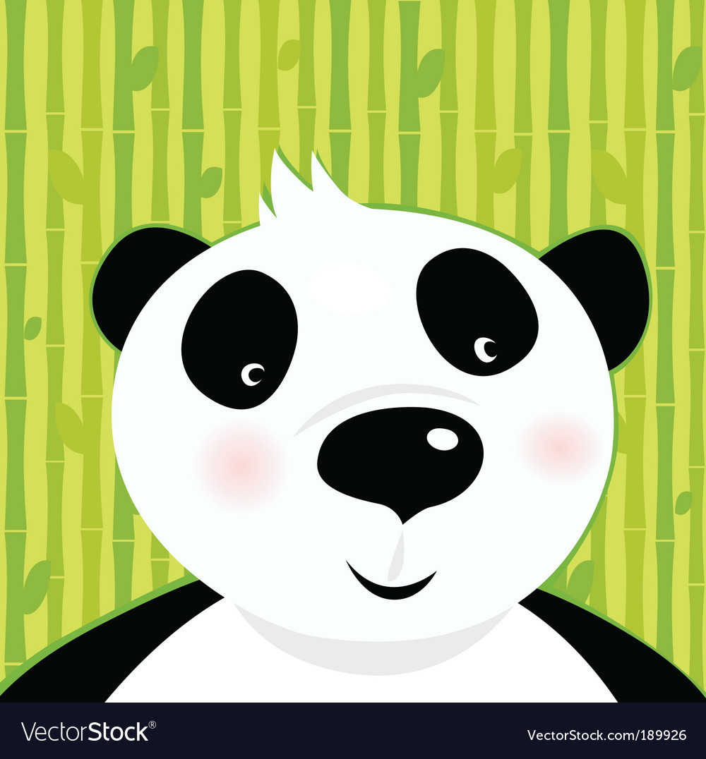 Panda bear on bamboo background vector image