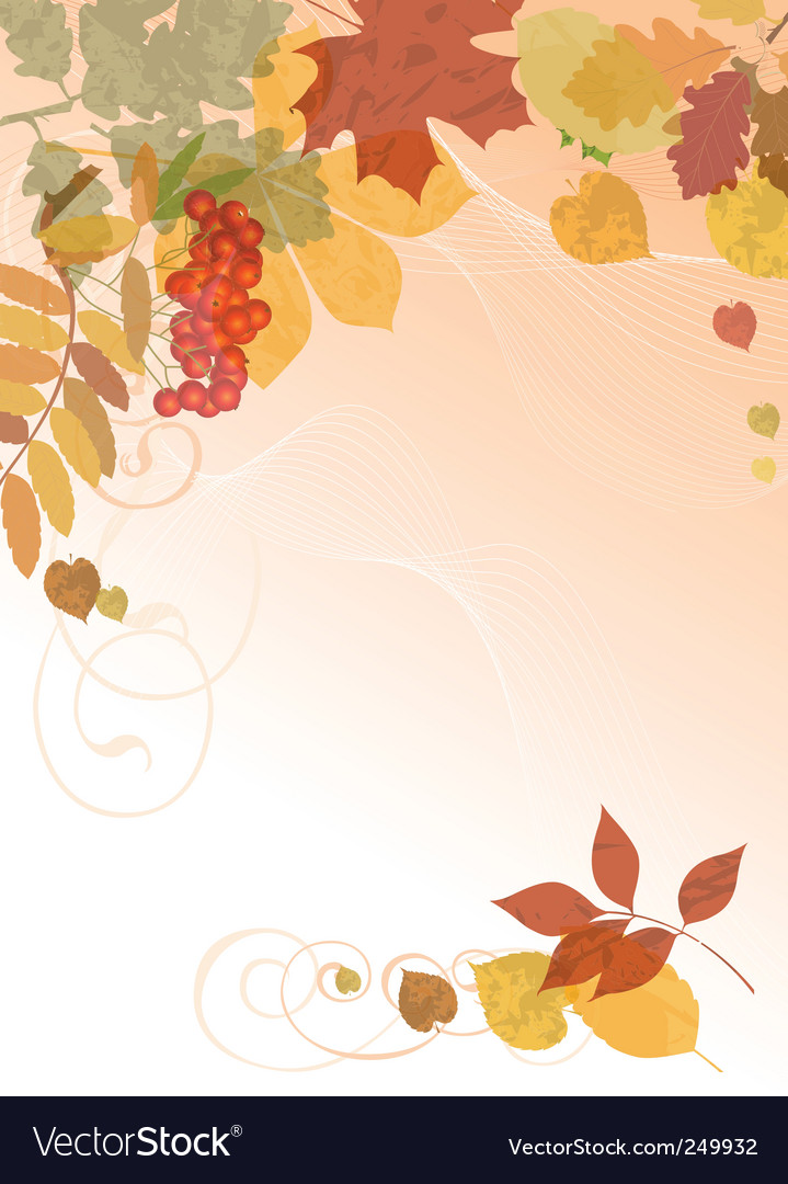 Autumn floral background vector image
