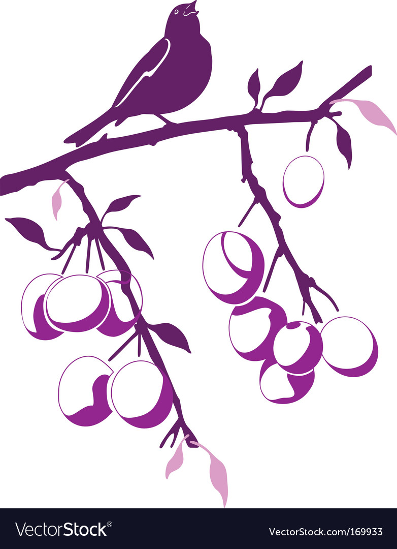 catholic singles in plum branch When i opened the door i saw that our front lawn was so full of fallen black plum (a native  i knew the branch i was  catholic online singles safe,.