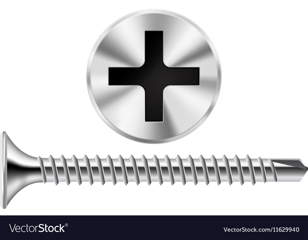 Screw and Screw head Chrome screw for metal vector image