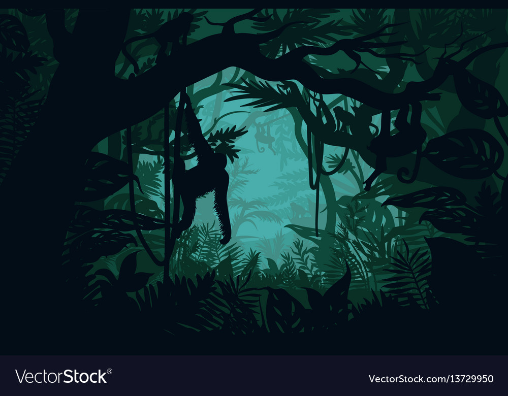 Natural jungle landscape template vector image