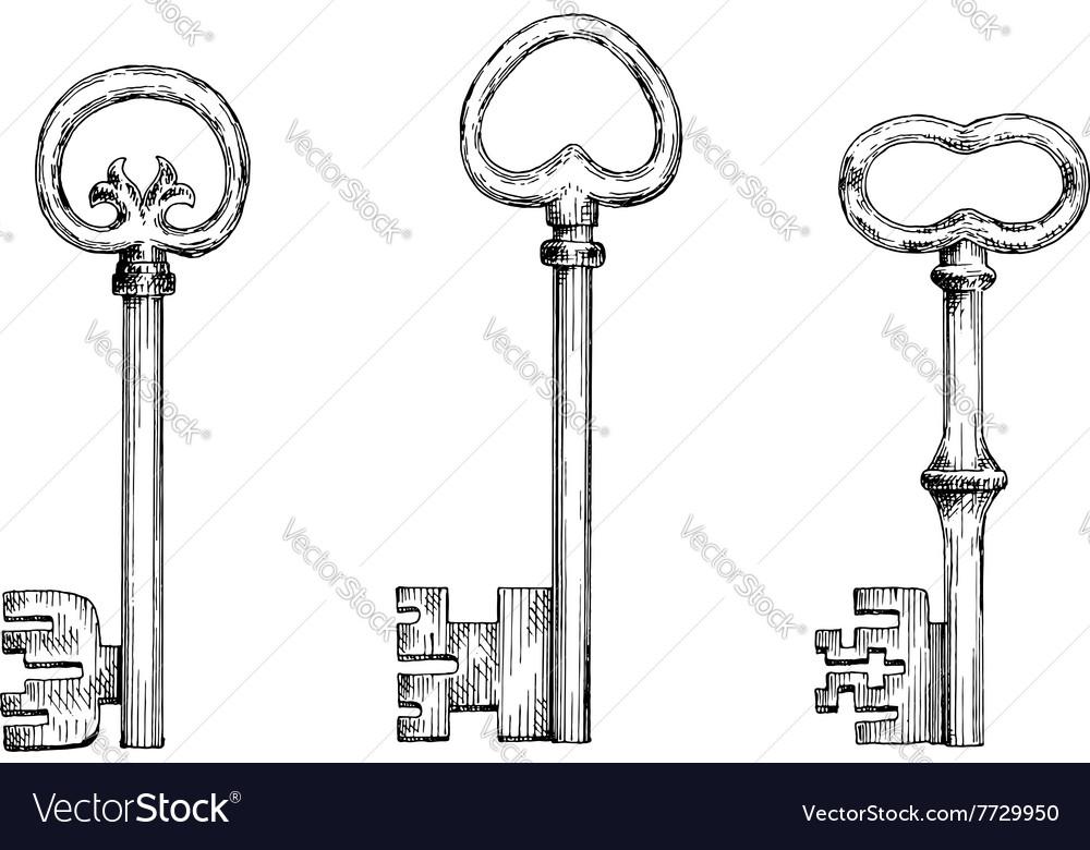 Vintage skeleton keys in engraving style vector image
