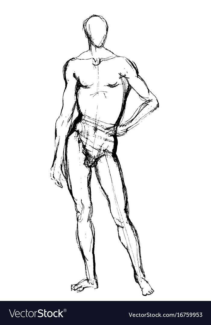 Man position sketch vector image