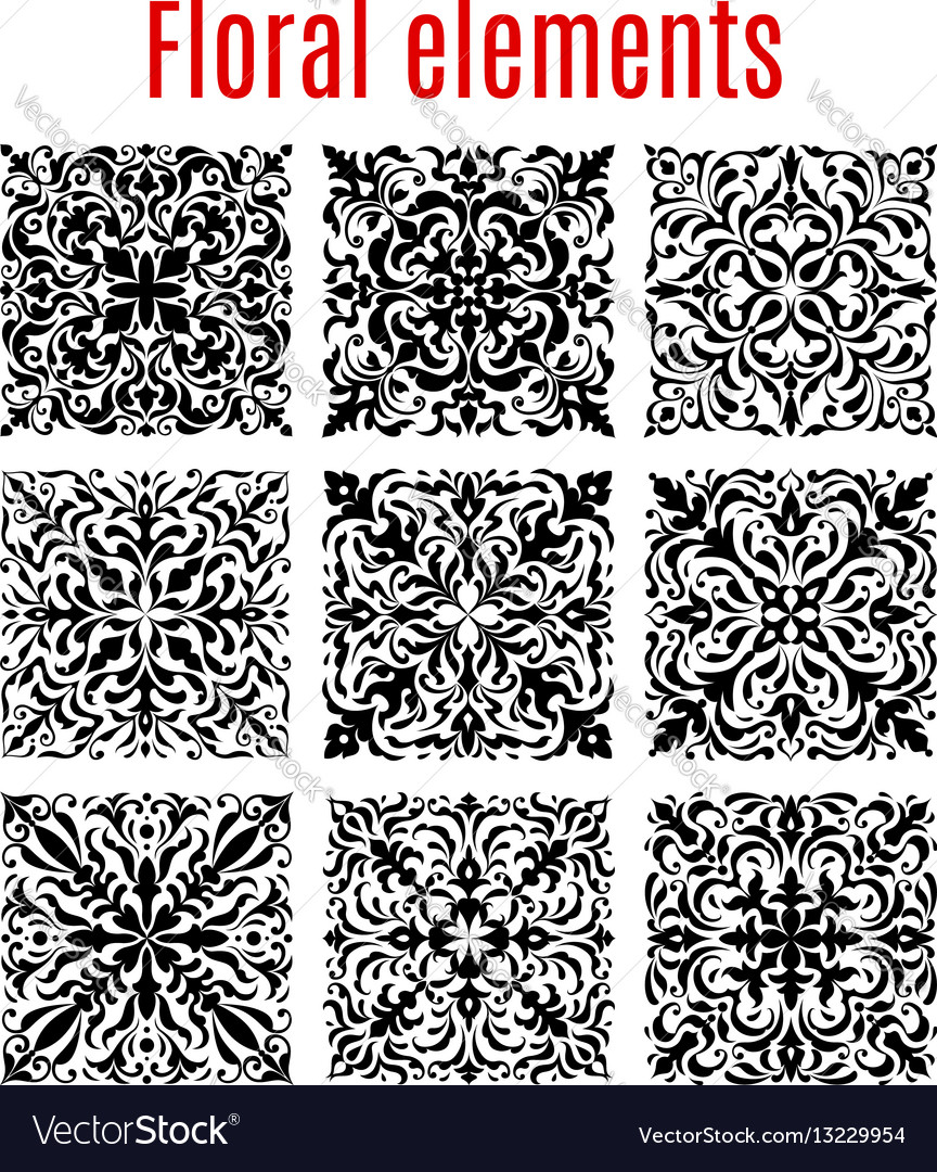Floral borders and ornate elements vector image