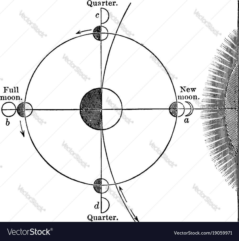 Cause of the phases of the moon vintage royalty free vector cause of the phases of the moon vintage vector image pooptronica Gallery