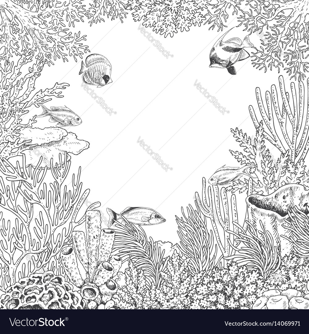 Underwater frame with coral and fishes vector image