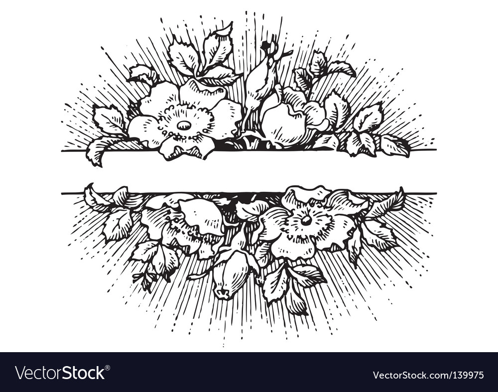 Antique flowers banner engraving vector image