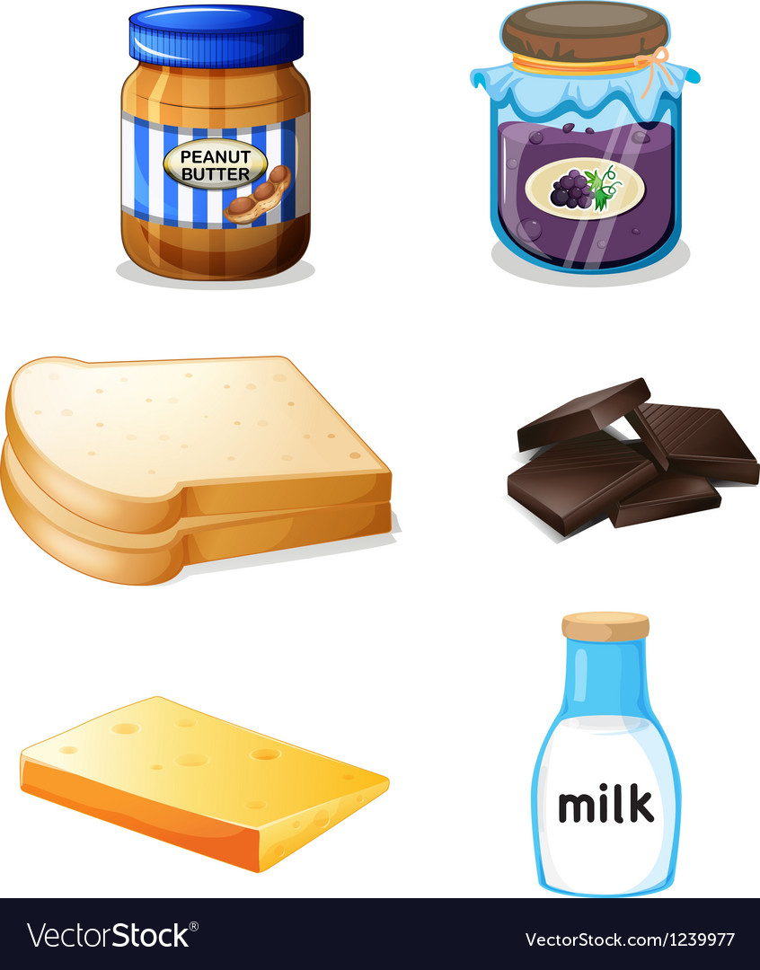 Different foods with vitamins and minerals vector image