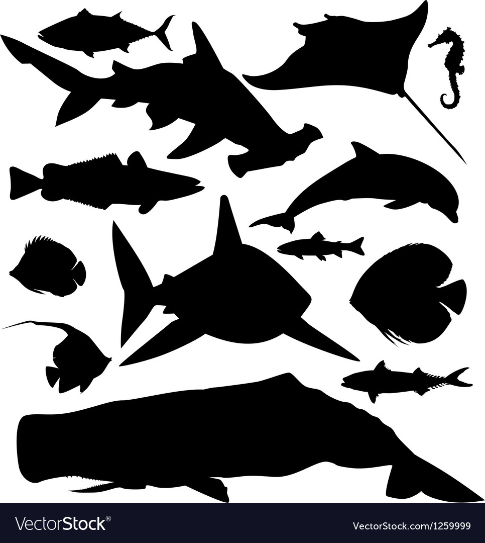Ocean fish silhouettes set vector image